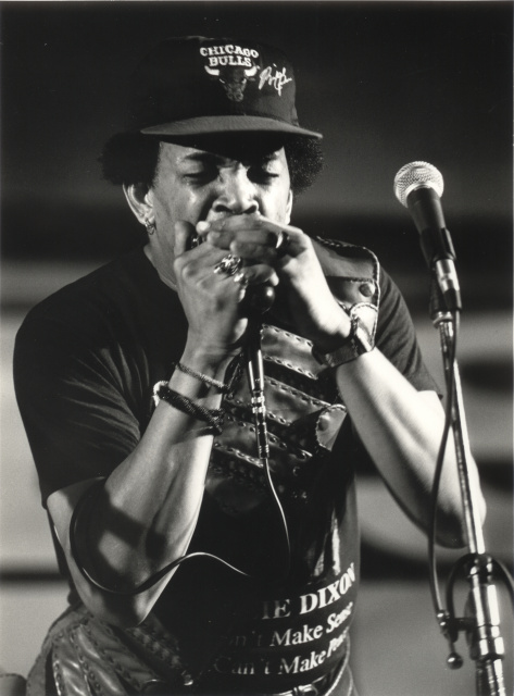 Blowing Off the Dust: Modern Masters of the Blues Harp